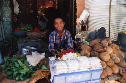 ココナツを売る男の子。インドの子どもはよく働く